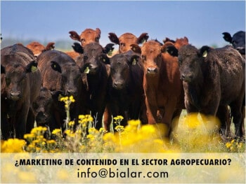 marketing de contenidos, marketing agropecuario, marketing agrario, marketing agricola, marketing frutihorticultura, marketing hortofruticola, cursos marketing agropecuario, bialar, consultora bialar. mariano larrazabal, comercio exterior, publicidad agropecuaria, comunicacion agraria,