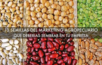 marketing agropecuario, marketing agrícola, agromarketing
