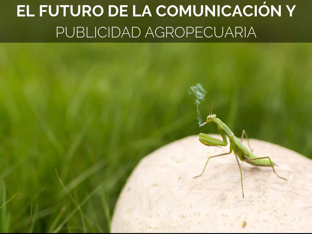 comunicacion agropecuaria, publicidad agropecuaria, marketing, agro, campo