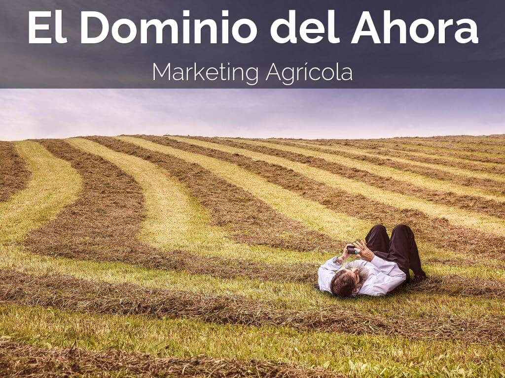 marketing agrícola, agricola, marketing, marketing agropecuario, agromarketing