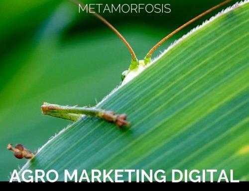 Agro Marketing Digital. Metamorfosis