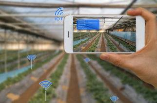 marketing agropecuario-bialar