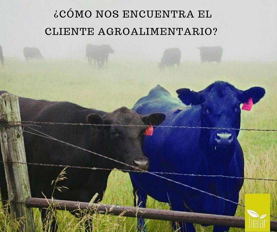estrategia-comunicación-publicidad-agroalimentario