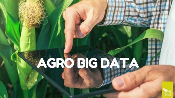 agro big data, agro, big data