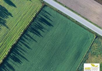 Agricultura Digital-Bialar-Agromarketing