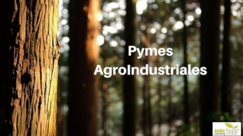 Pymes AgroIndustriales, agromarketing