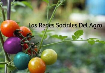 Las Redes Sociales- Agro