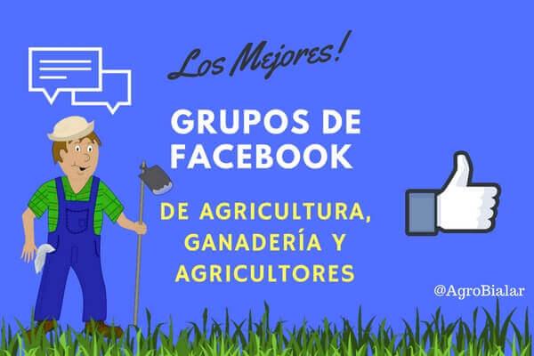 Grupos de Facebook-Agricultura-Ganadería-Agricultores