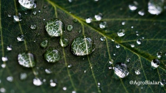 estado-del-tiempo-pronostico-clima