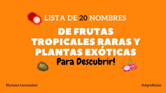 Frutas Tropicales Raras y Plantas Exóticas