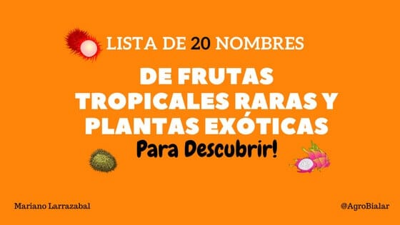 Marketing agropecuario agroalimentario agromarketing redes sociales agro community manager - Frutas tropicales y exoticas ...