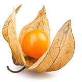 imagenes de frutas - Tomatillo o alquejenje