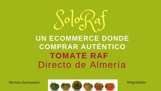 Soloraf. Un Ecommerce Donde Comprar Auténtico Tomate Raf Directo de Almería