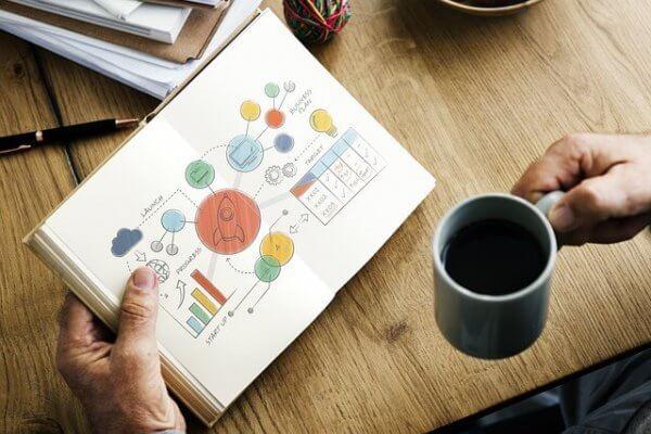 La Importancia del Marketing en la Creación de Una Startup del Sector Agrifood y Agtech