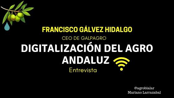 Digitalización del Agro Andaluz. Entrevista a Francisco Gálvez Hidalgo. CEO de Galpagro
