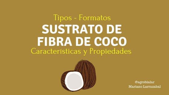 Sustrato de Fibra de Coco. Tipos, Formatos, Características y Propiedades