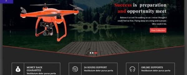Tema Drone Solutions
