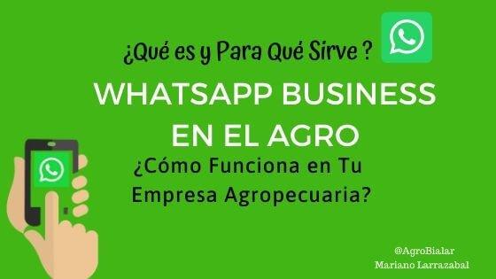 WhatsApp-Business- Agro-para-que-sirve-como-funciona-empresa-agropecuaria