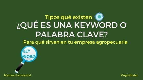 Keyword-Palabra-Clave