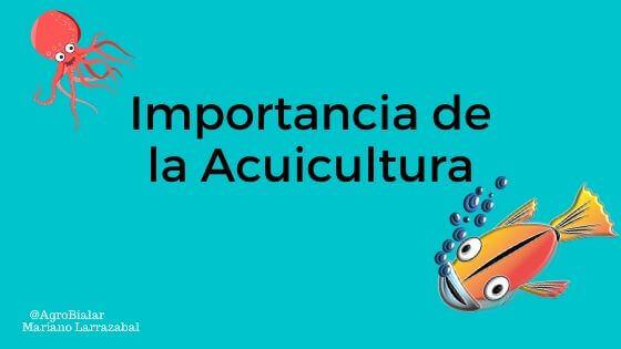 Importancia de la Acuicultura