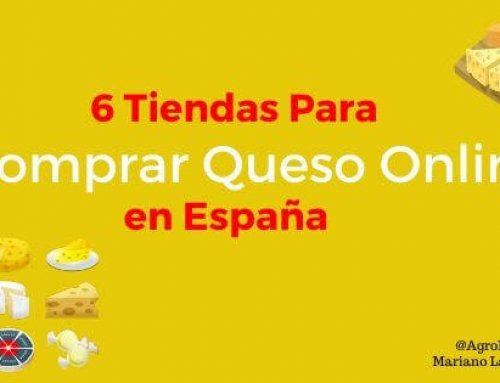 6 Tiendas Para Comprar Queso Online en España